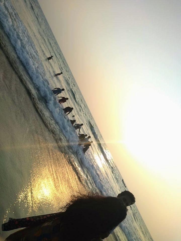 beach23